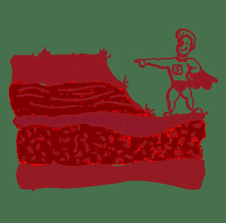 SOILBOOK – Bodenprofil ausheben