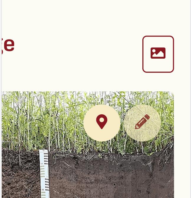 SOILBOOK Tutorial – Geographical Data