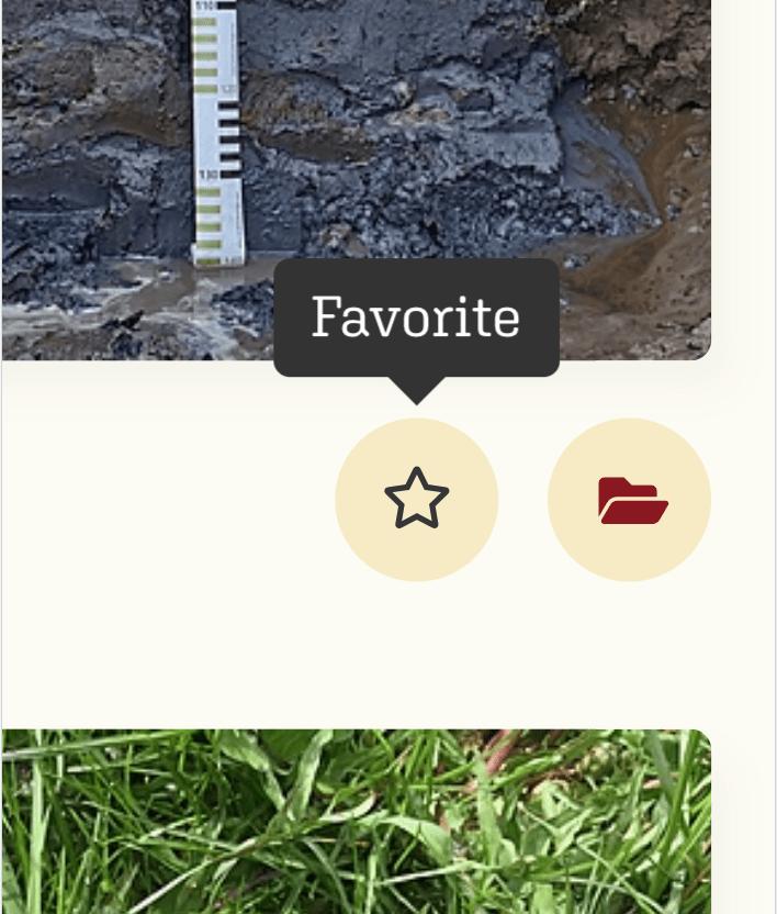 SOILBOOK Tutorial – Favorit